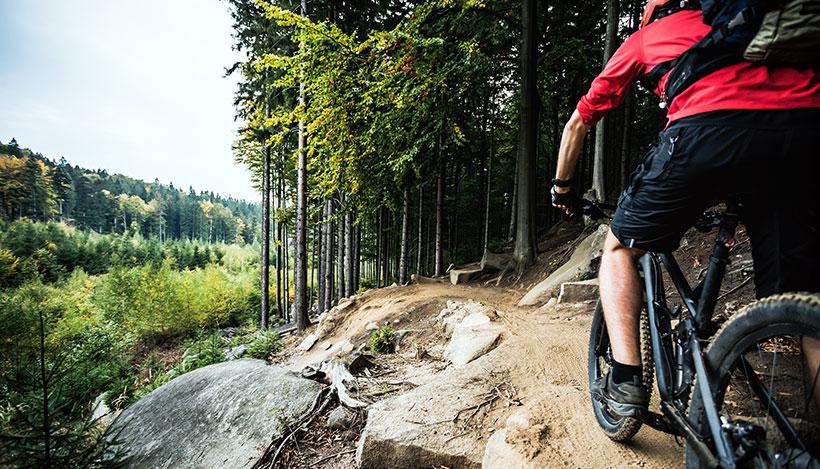 Fördelarna med enväxlade mountainbikes